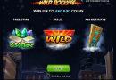 wild_rockets-130x90