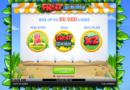 Fruit_Shop_130x90
