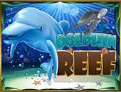 b3f43e79dc2fb49ec28887ad94ccadffdolphins_reef