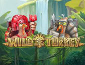 wild turkey väike