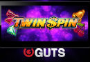 Twin_SPin_Mobile_Guts-130x90