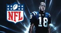 NFLSportsbetting_NO_206x112