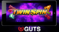 Twin_Spin_Mobile_Guts-206x112
