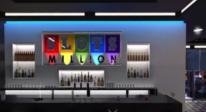 slotsmillion-virtuell-virkelighet